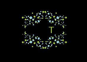 Végétalise.Toi(t).logo-01